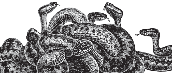 Getting started with Python's Twisted Framework